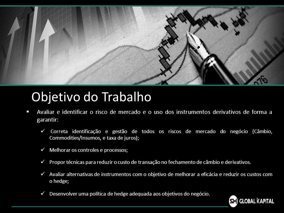 Objetivo do Trabalho Avaliar e identificar o risco de mercado e o uso dos instrumentos derivativos de forma a garantir: