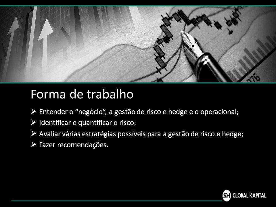 Forma de trabalho Entender o negócio , a gestão de risco e hedge e o operacional; Identificar e quantificar o risco;
