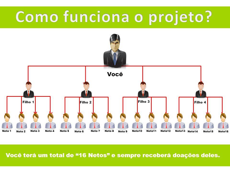 Como funciona o projeto