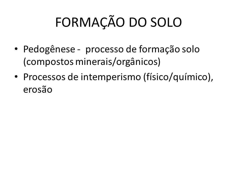 FORMAÇÃO DO SOLO Pedogênese - processo de formação solo (compostos minerais/orgânicos) Processos de intemperismo (físico/químico), erosão.