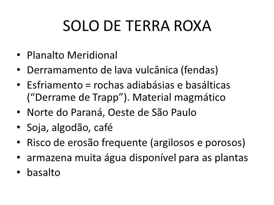 SOLO DE TERRA ROXA Planalto Meridional