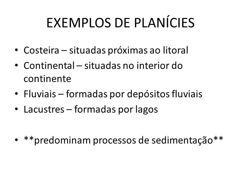 EXEMPLOS DE PLANÍCIES Costeira – situadas próximas ao litoral