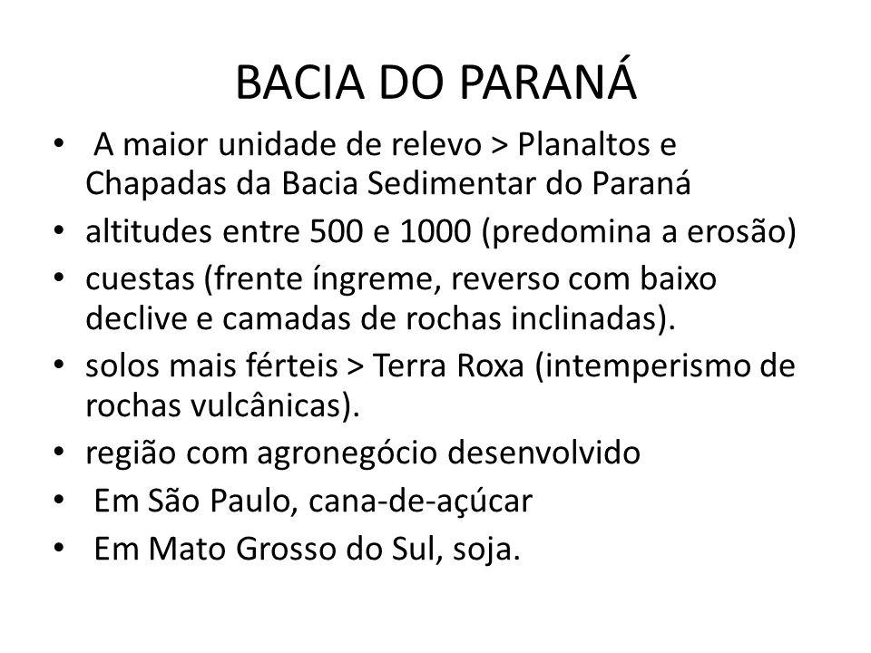 BACIA DO PARANÁ A maior unidade de relevo > Planaltos e Chapadas da Bacia Sedimentar do Paraná. altitudes entre 500 e 1000 (predomina a erosão)
