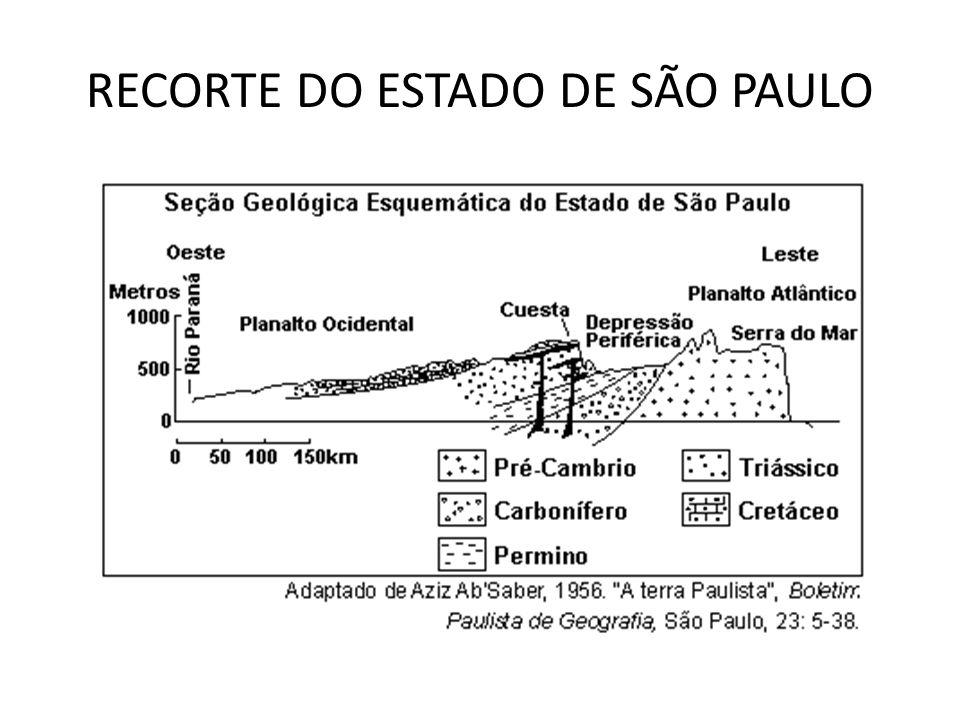 RECORTE DO ESTADO DE SÃO PAULO