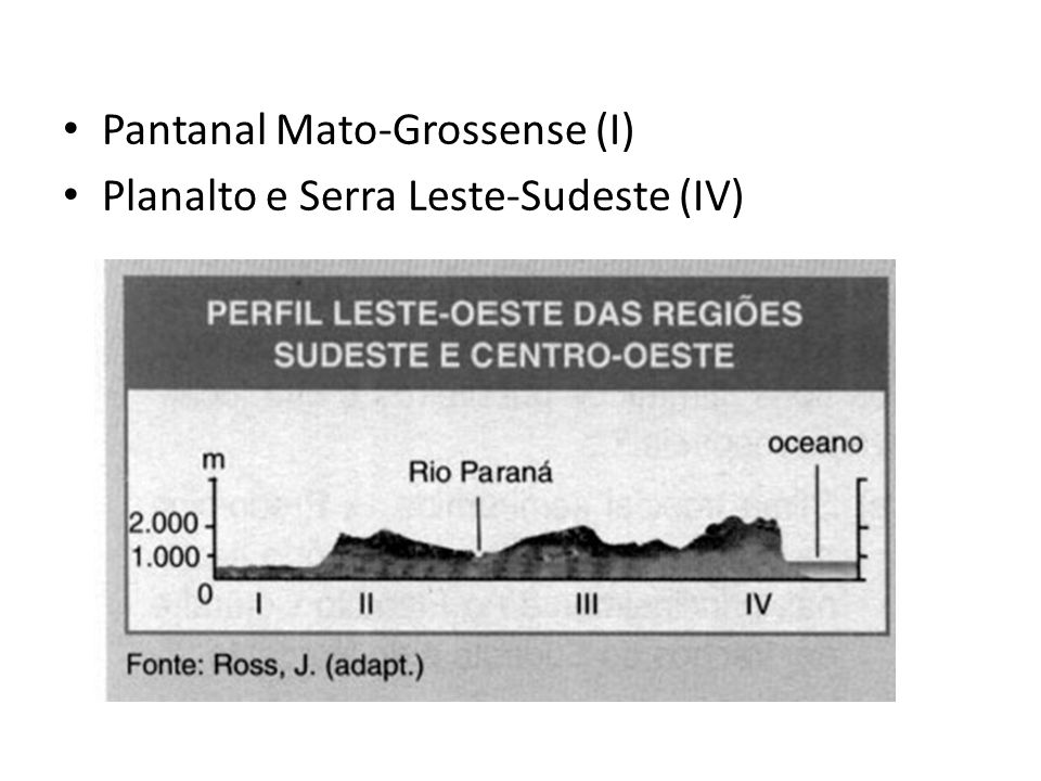 Pantanal Mato-Grossense (I)