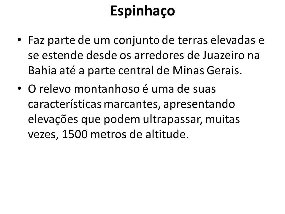 Espinhaço Faz parte de um conjunto de terras elevadas e se estende desde os arredores de Juazeiro na Bahia até a parte central de Minas Gerais.