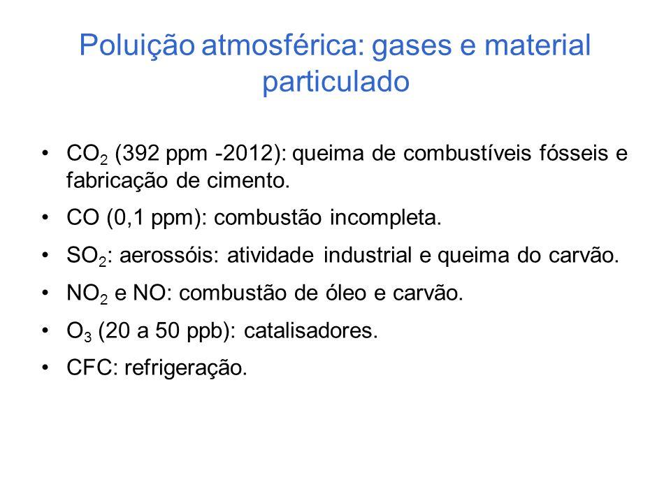Poluição atmosférica: gases e material particulado