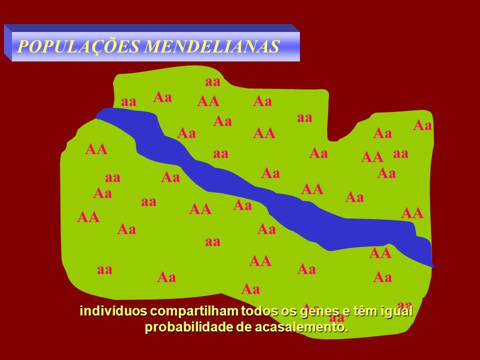 POPULAÇÕES MENDELIANAS