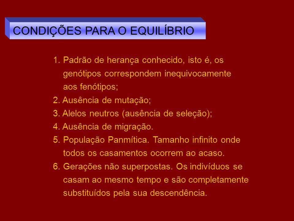 CONDIÇÕES PARA O EQUILÍBRIO