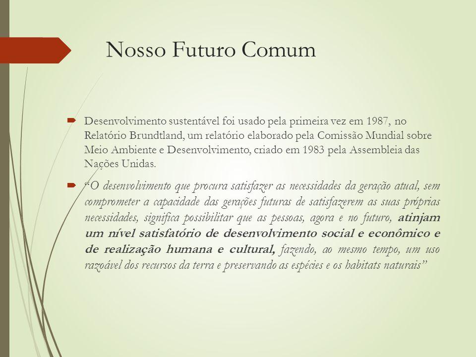 Nosso Futuro Comum