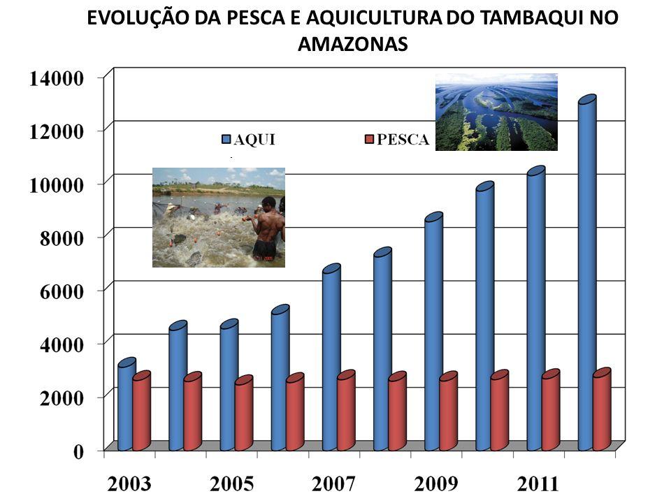 EVOLUÇÃO DA PESCA E AQUICULTURA DO TAMBAQUI NO AMAZONAS