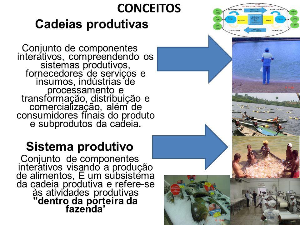 CONCEITOS Cadeias produtivas Sistema produtivo