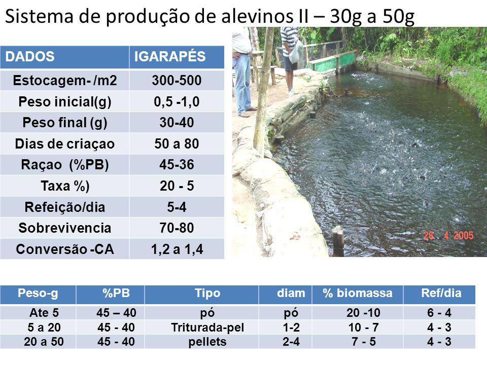 Sistema de produção de alevinos II – 30g a 50g