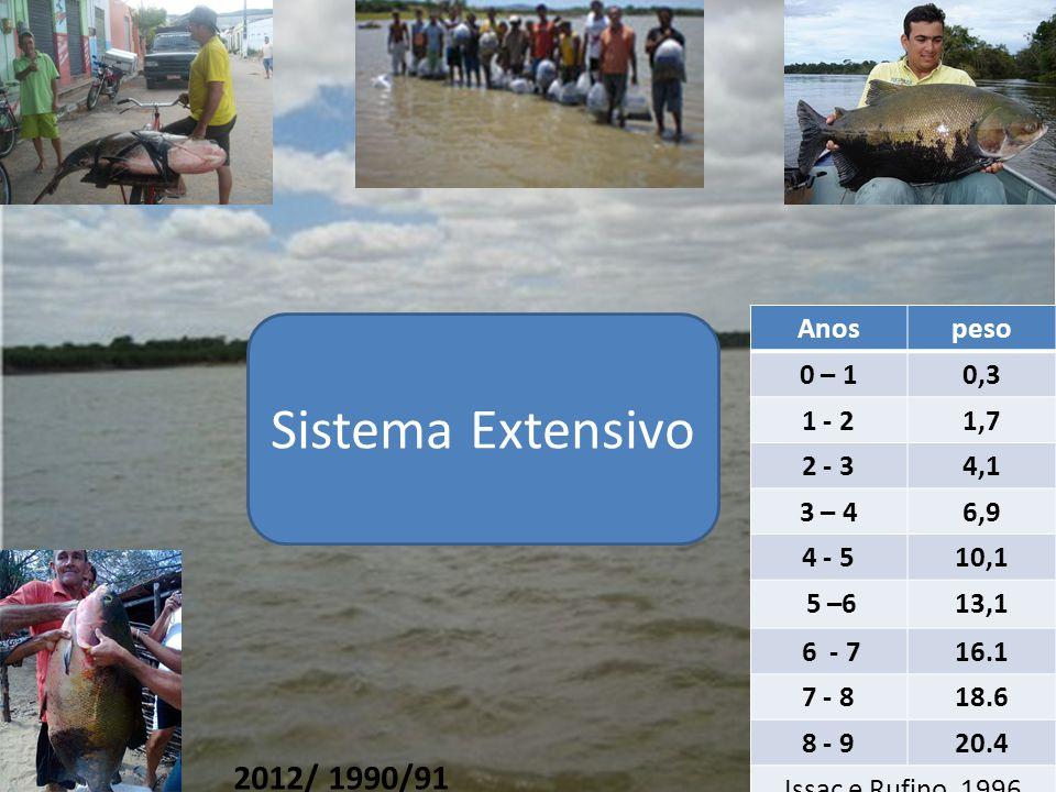 Sistema Extensivo 2012/ 1990/91 Anos peso 0 – 1 0,3 1 - 2 1,7 2 - 3
