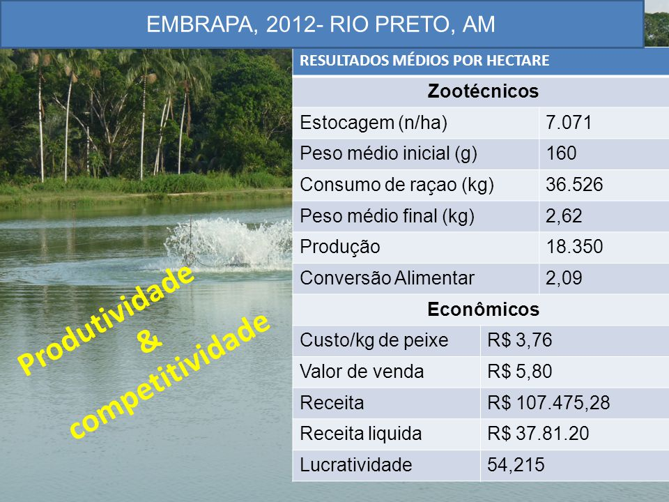 Produtividade & competitividade EMBRAPA, 2012- RIO PRETO, AM