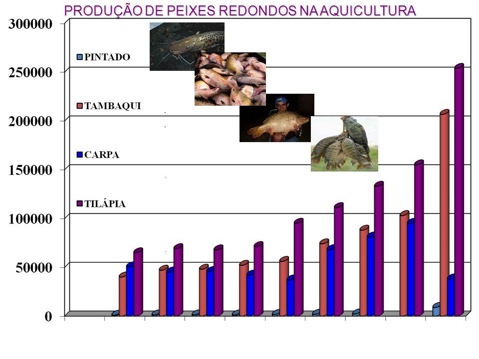 PRODUÇÃO DE PEIXES REDONDOS NA AQUICULTURA