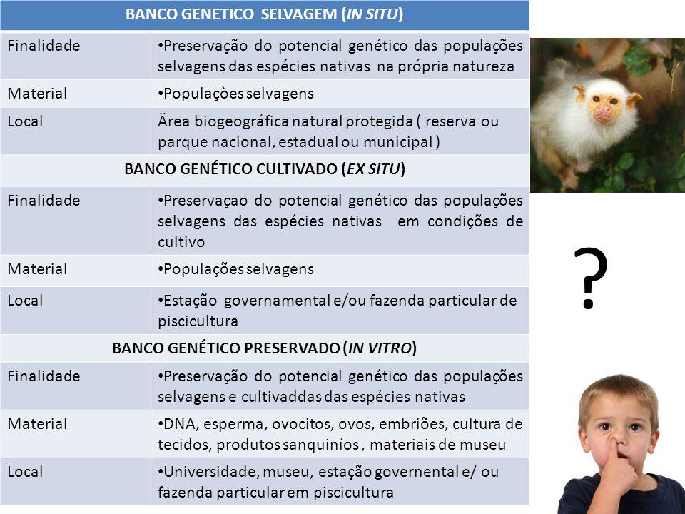 BANCO GENETICO SELVAGEM (IN SITU) Finalidade