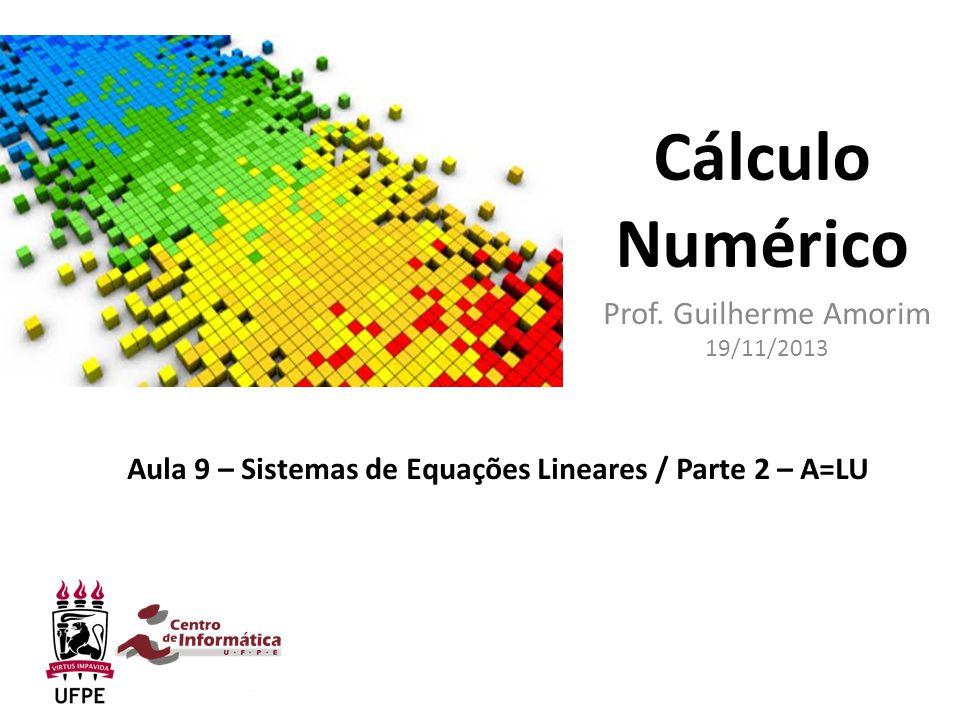 Prof. Guilherme Amorim 19/11/2013
