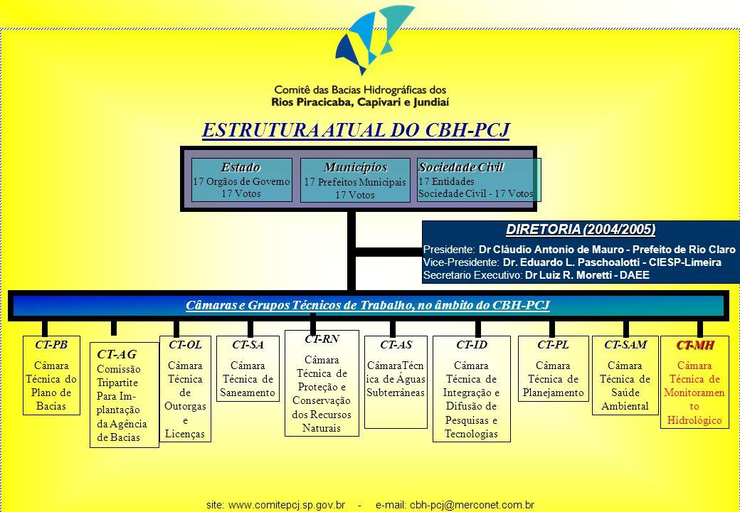 ESTRUTURA ATUAL DO CBH-PCJ