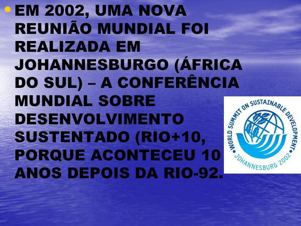 EM 2002, UMA NOVA REUNIÃO MUNDIAL FOI REALIZADA EM JOHANNESBURGO (ÁFRICA DO SUL) – A CONFERÊNCIA MUNDIAL SOBRE DESENVOLVIMENTO SUSTENTADO (RIO+10, PORQUE ACONTECEU 10 ANOS DEPOIS DA RIO-92.