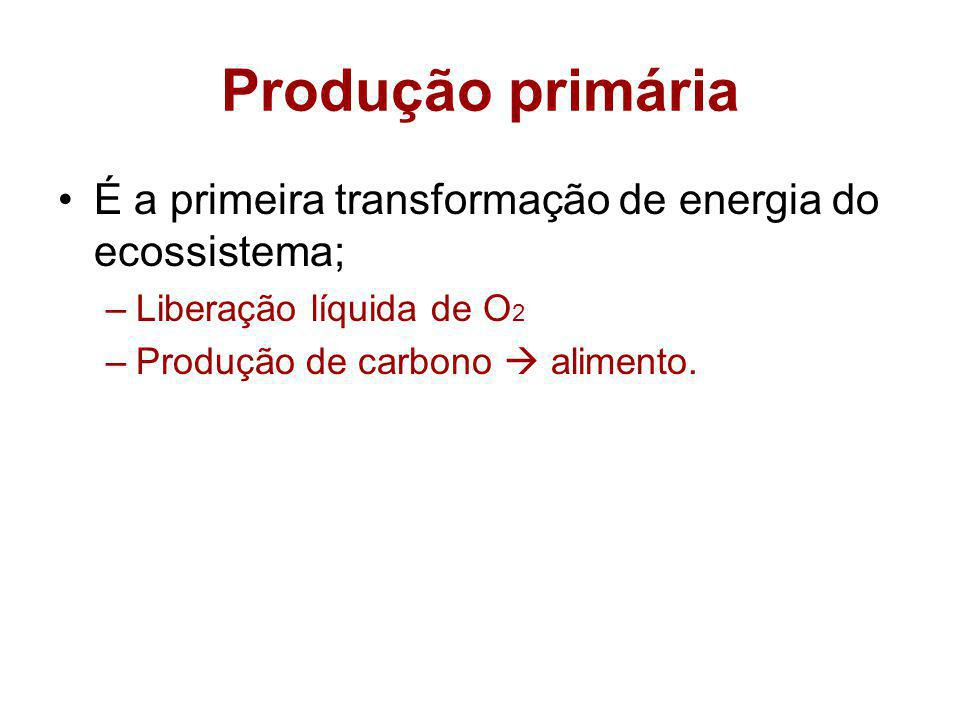 Produção primária É a primeira transformação de energia do ecossistema; Liberação líquida de O2.