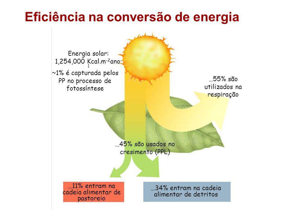 Eficiência na conversão de energia