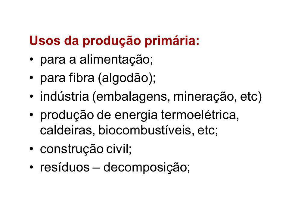 Usos da produção primária: