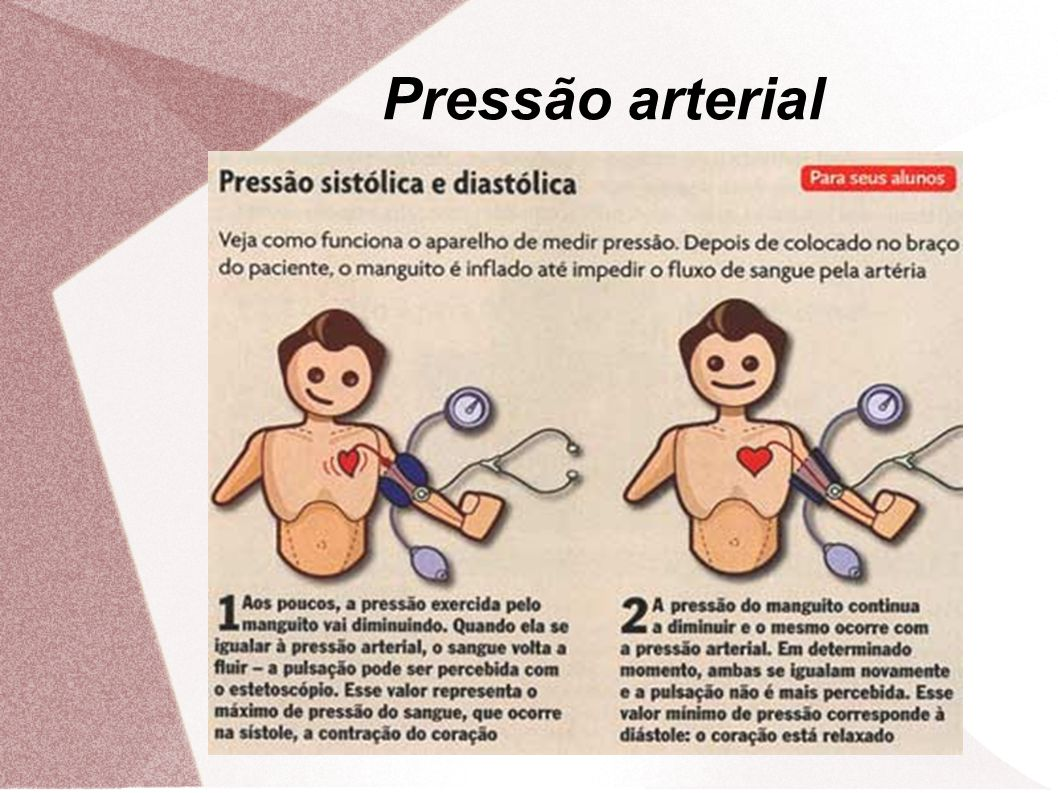 Pressão arterial 15
