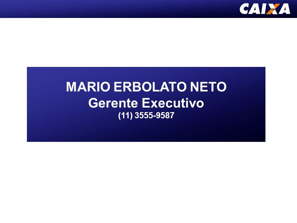 MARIO ERBOLATO NETO Gerente Executivo