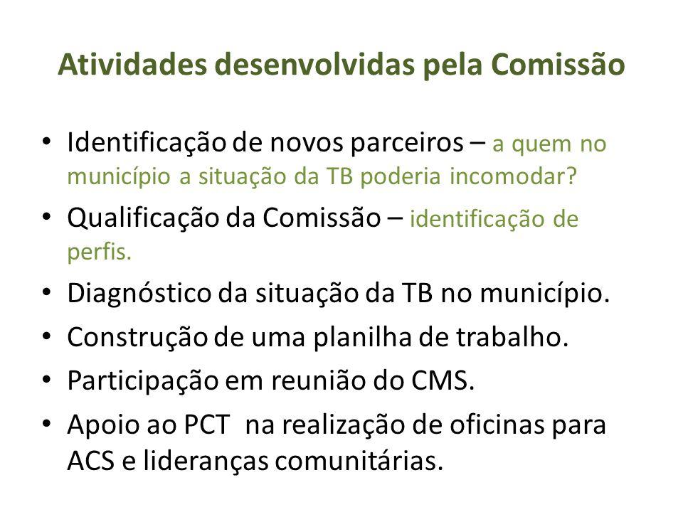 Atividades desenvolvidas pela Comissão