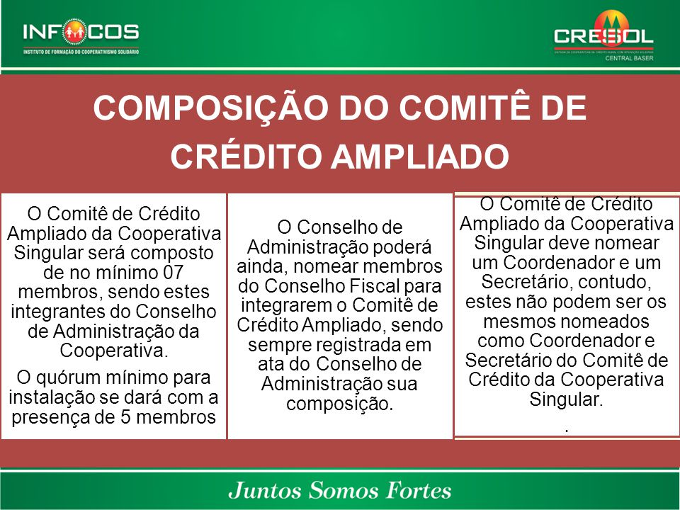 COMPOSIÇÃO DO COMITÊ DE