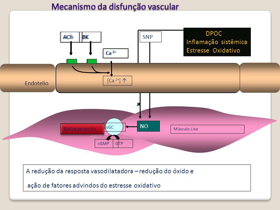 Mecanismo da disfunção vascular