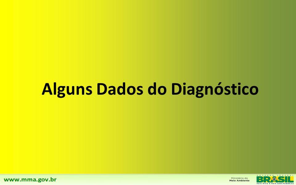Alguns Dados do Diagnóstico