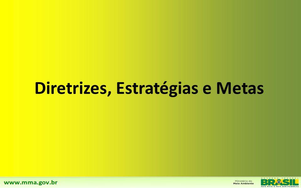 Diretrizes, Estratégias e Metas