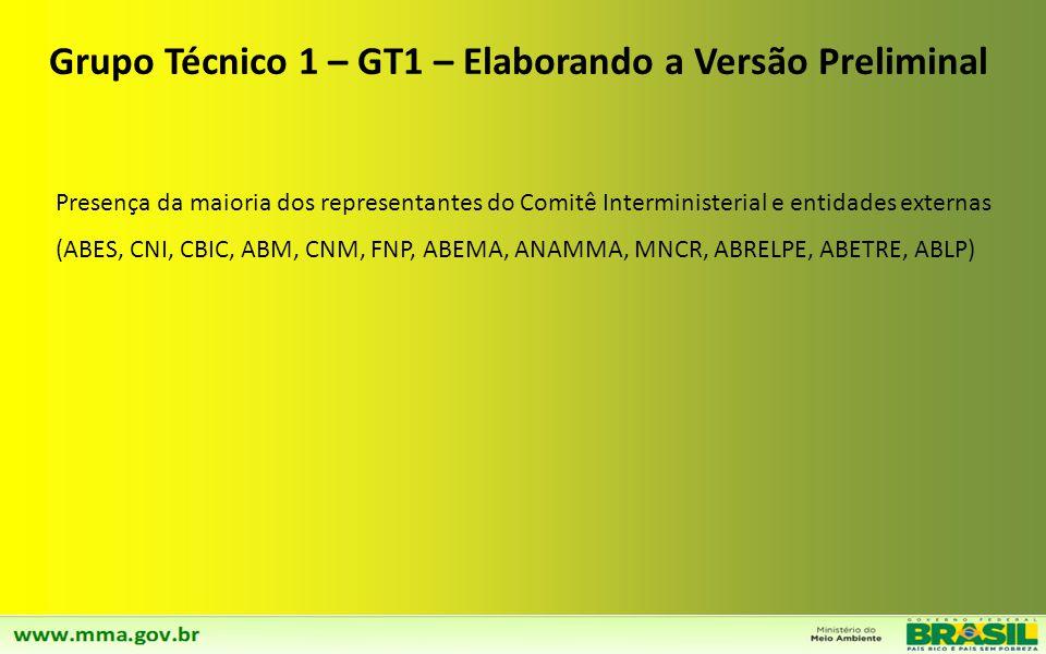 Grupo Técnico 1 – GT1 – Elaborando a Versão Preliminal