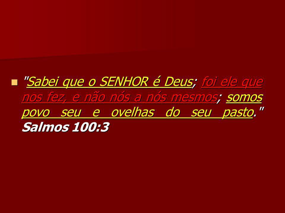 Sabei que o SENHOR é Deus; foi ele que nos fez, e não nós a nós mesmos; somos povo seu e ovelhas do seu pasto. Salmos 100:3