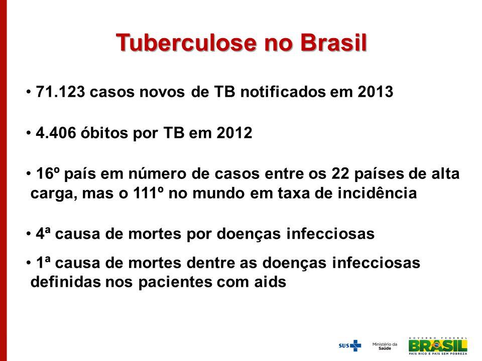 Tuberculose no Brasil 71.123 casos novos de TB notificados em 2013