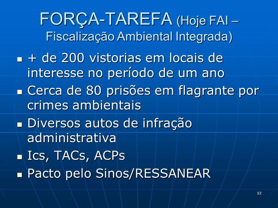 FORÇA-TAREFA (Hoje FAI – Fiscalização Ambiental Integrada)