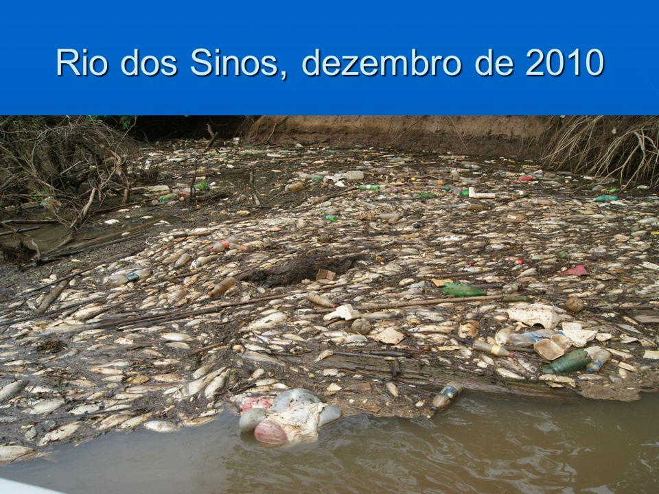 Rio dos Sinos, dezembro de 2010