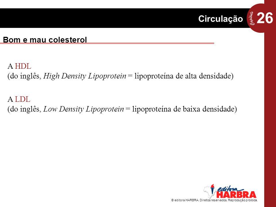 Bom e mau colesterol A HDL (do inglês, High Density Lipoprotein = lipoproteína de alta densidade)