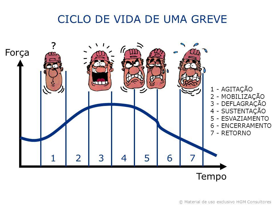 CICLO DE VIDA DE UMA GREVE