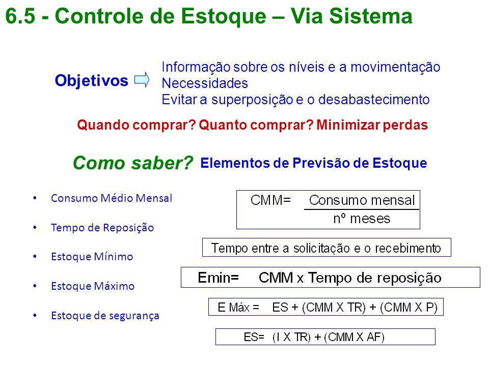 6.5 - Controle de Estoque – Via Sistema