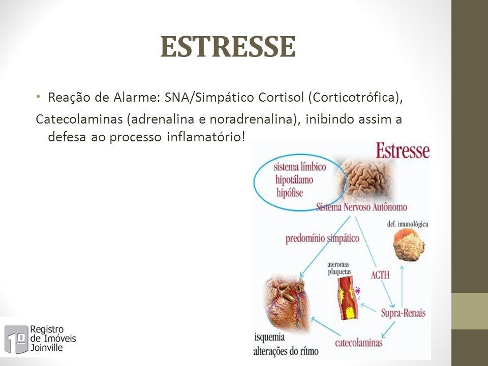 ESTRESSE Reação de Alarme: SNA/Simpático Cortisol (Corticotrófica),