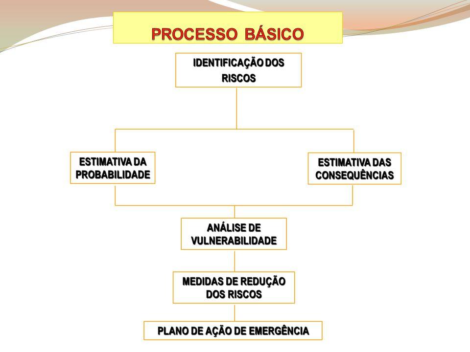PROCESSO BÁSICO 1 1