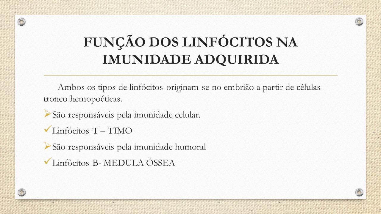 FUNÇÃO DOS LINFÓCITOS NA IMUNIDADE ADQUIRIDA