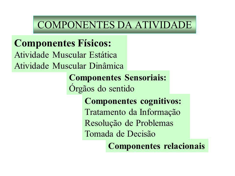 COMPONENTES DA ATIVIDADE