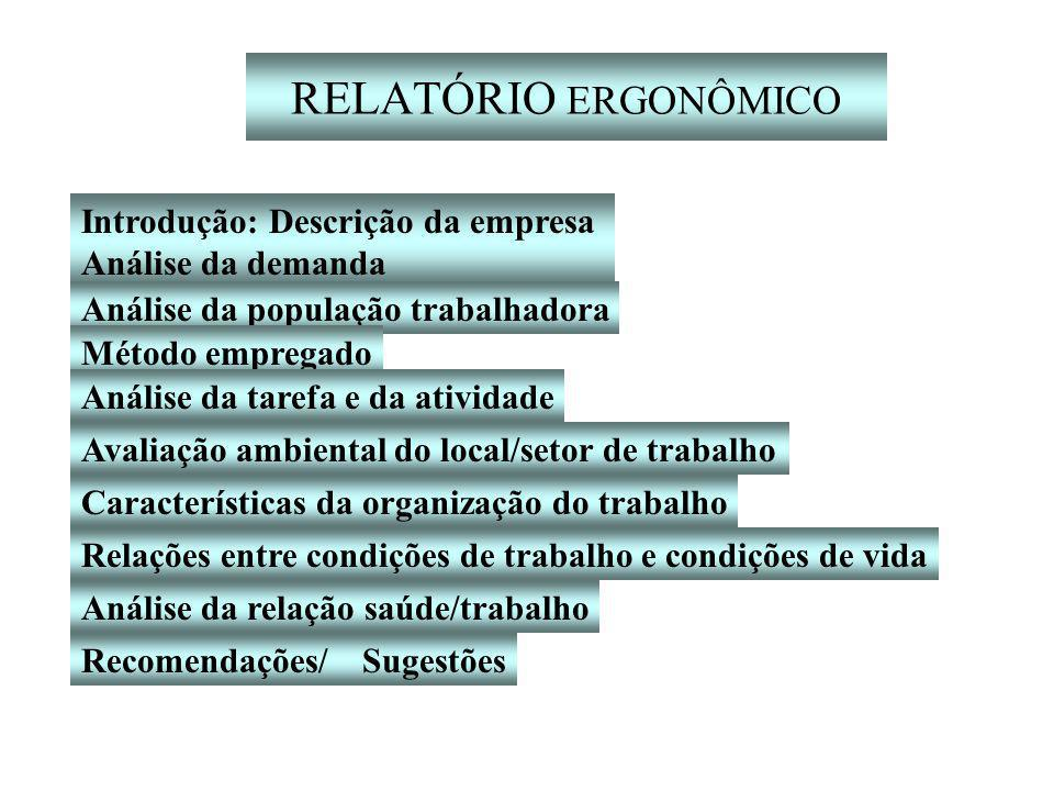 RELATÓRIO ERGONÔMICO Introdução: Descrição da empresa