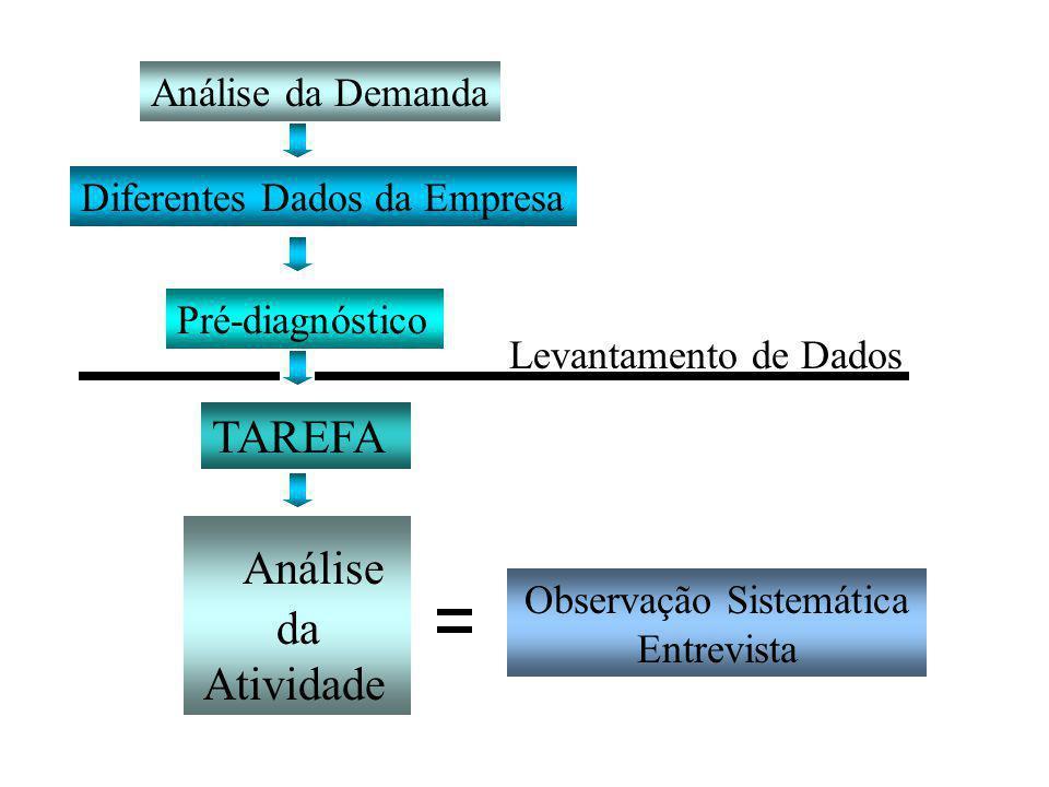 Observação Sistemática