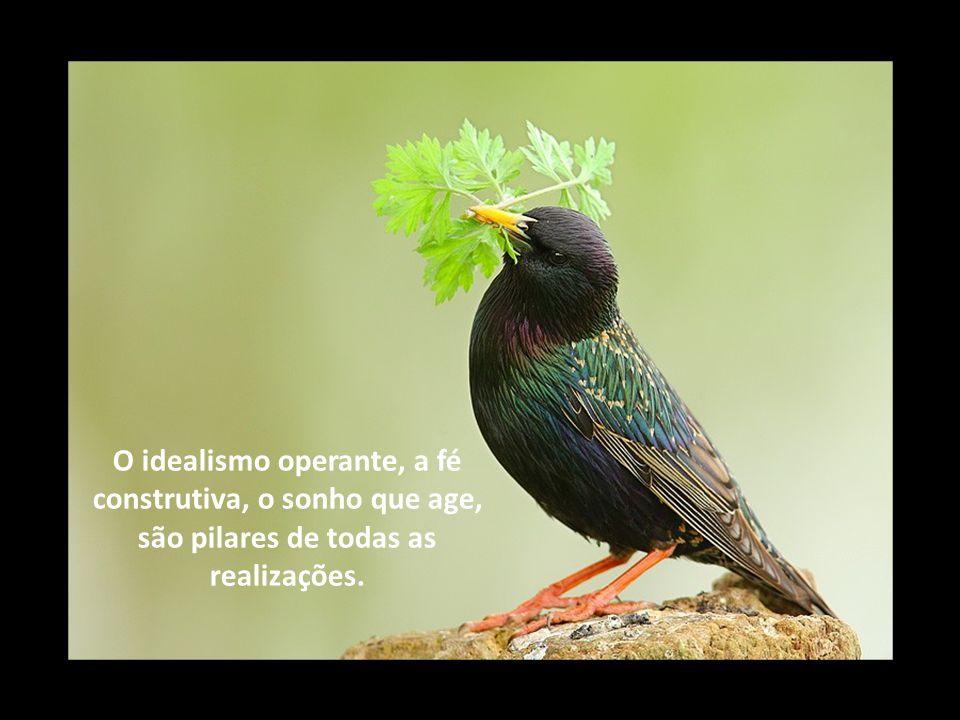O idealismo operante, a fé construtiva, o sonho que age, são pilares de todas as realizações.