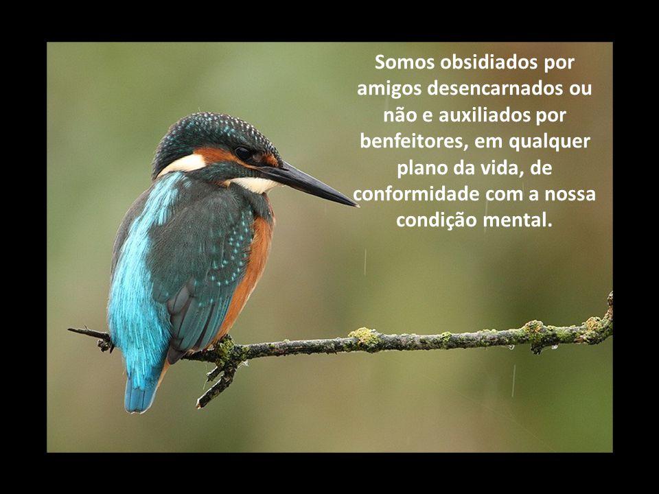 Somos obsidiados por amigos desencarnados ou não e auxiliados por benfeitores, em qualquer plano da vida, de conformidade com a nossa condição mental.